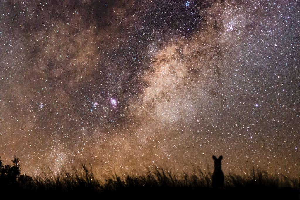 Long exposure cameras make the Milky Way better visible